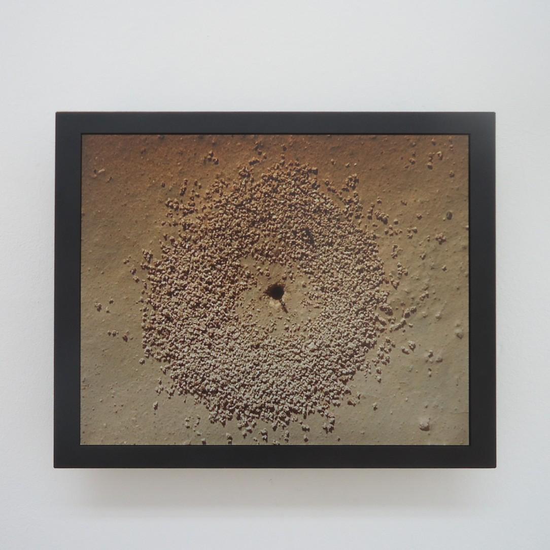 Jananne Al-Ani, 'Excavators', 2010.